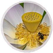 Lotus Pollinator Round Beach Towel