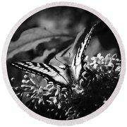 Eclectus Parrot  - Eclectus Roratus Round Beach Towel