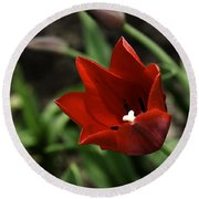 Love Tulip Time Round Beach Towel