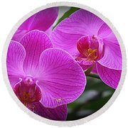 Lovely In Purple - Orchids Round Beach Towel