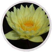 Lovely Lotus Round Beach Towel