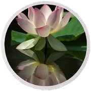 Lovely Lotus Reflection Round Beach Towel