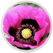 Lovely Springtime Round Beach Towel