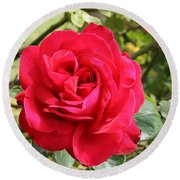 Lovely Red Rose Round Beach Towel