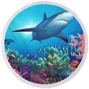 Low Angle View Of A Shark Swimming Round Beach Towel by Panoramic Images