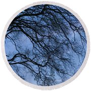 Low Angle View Of Tree At Dawn, Dark Round Beach Towel