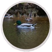 Lowcountry Duck Gathering Round Beach Towel