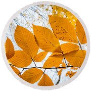 Luminescent Leaves Round Beach Towel