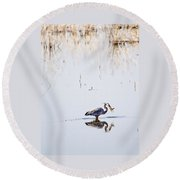 Lunch Time Round Beach Towel