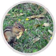 Lunch Time Photo A Round Beach Towel