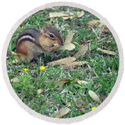 Lunch Time Photo E Round Beach Towel