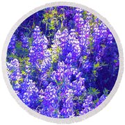 Lupine 2 Round Beach Towel