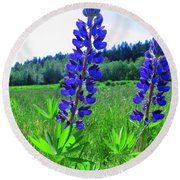 Lupine Flower Round Beach Towel