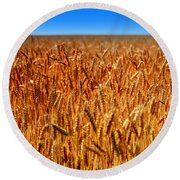 Lying In The Rye Round Beach Towel