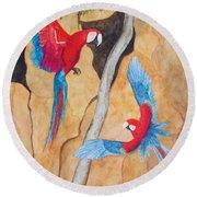Macaw Claylick Round Beach Towel