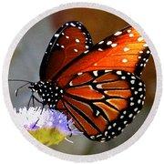Macro Butterfly Round Beach Towel