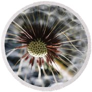 Macro Round Beach Towel