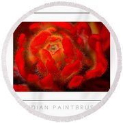Indian Paintbrush Poster Round Beach Towel