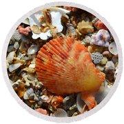 Macro Shell On Sand Round Beach Towel by Riad Belhimer