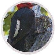 Magellanic Woodpecker Round Beach Towel