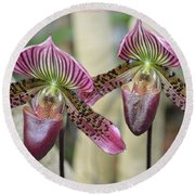 Magenta  Lady Slippers Round Beach Towel