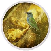 Magic At The Feeder... Round Beach Towel