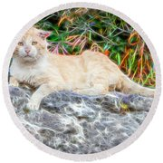 Magical Cat Round Beach Towel