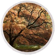 Magnificent Autumn Round Beach Towel by Anne Gilbert