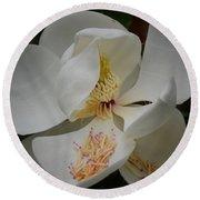 Magnolia 14-3 Round Beach Towel