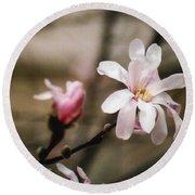 Magnolia Blooms Round Beach Towel