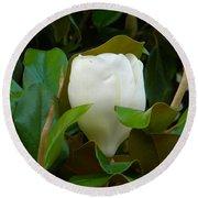 Magnolia Blossom Round Beach Towel
