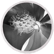 Magnolia Blossom - Photopower 2476 Bw Round Beach Towel