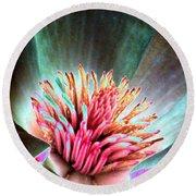 Magnolia Flower - Photopower 1841 Round Beach Towel