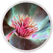 Magnolia Flower - Photopower 1844 Round Beach Towel