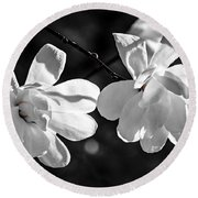 Magnolia Flowers Round Beach Towel