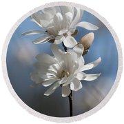 Magnolia Magnificence  3245 Round Beach Towel