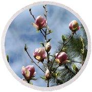 Magnolias In Bud Round Beach Towel