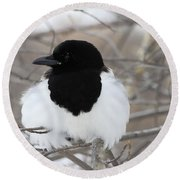 Magpie Profile Round Beach Towel