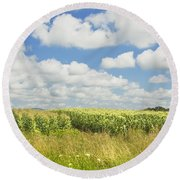 Maine Corn Field In Summer Photo Print Round Beach Towel