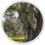 Majestic Live Oak Tree Round Beach Towel