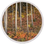 Majestic Autumn In The Grand Tetons Round Beach Towel