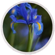 Majestic Blue Iris Round Beach Towel