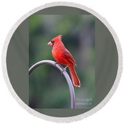 Majestic Cardinal Round Beach Towel