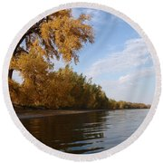 Majestic Cottonwood Round Beach Towel
