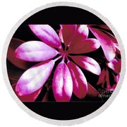 Majestic Leaves Round Beach Towel