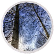 Majestic Trees Round Beach Towel