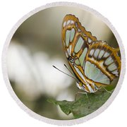 Malachite Butterfly Round Beach Towel