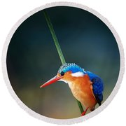 Malachite Kingfisher Round Beach Towel