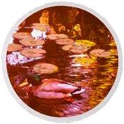 Malard Duck On Pond 3 Round Beach Towel