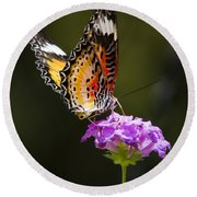 Malay Lacewing On A Flower  Round Beach Towel